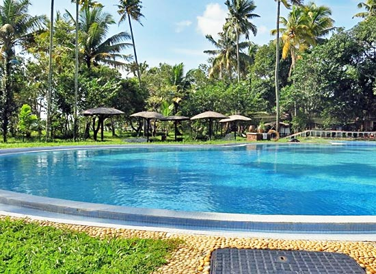 Coconut Lagoon Resort kumarakom pool view