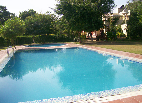 Hotel Sariska Palace alwer pool