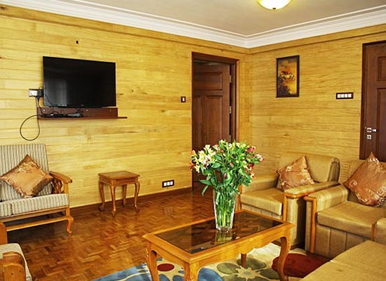 Dekeling Resort darjeeling living room