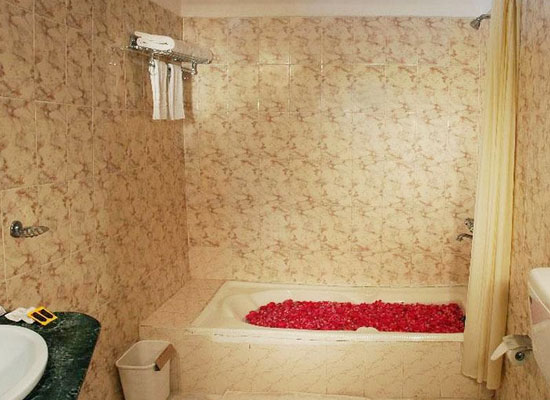 bathroom of Ranthambore Forest Resort Sawai Madhopur