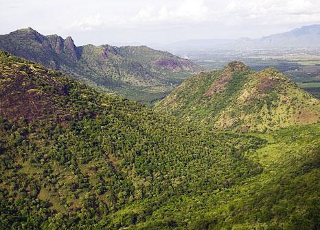 Hill View from Rajakkad Estate Madurai